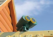 Eagle - Play - Structure - Additional - Options - Binoculars
