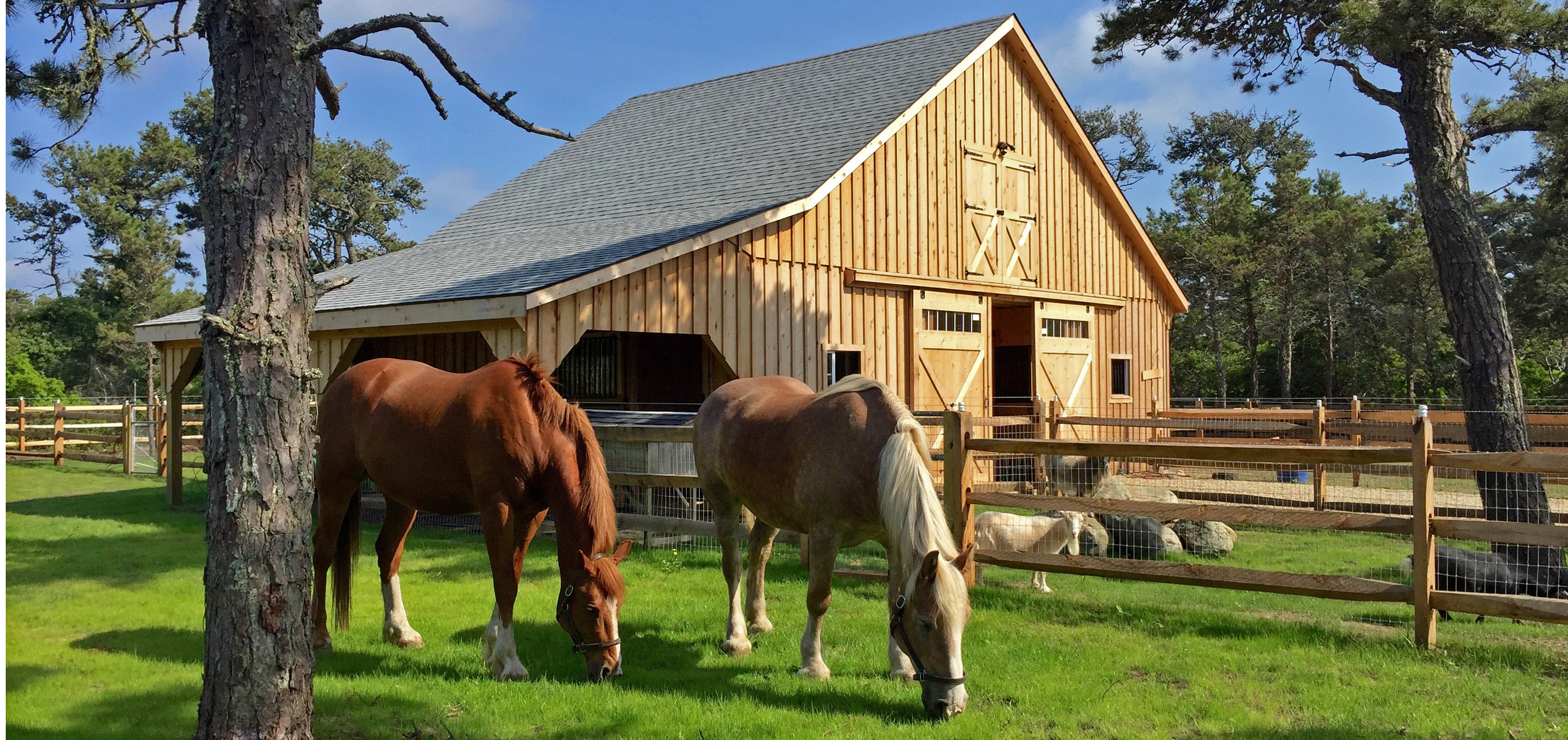barns and buildings quality barns and buildings horse - HD 3276×1547